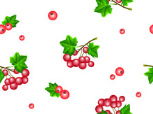 Beautiful Seamless Pattern With Realistic Clusters Of Red Viburnum Berries With Green Leaves On A White Background. Vector Drawing For Design Of Textile, Fabrics, Wallpaper, Packaging And Other.