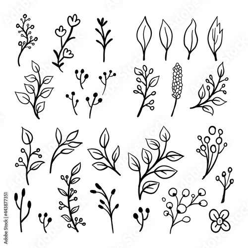 Fotografering Floral ornaments doodle set