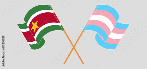 Photo Crossed and waving flags of Suriname and Transgender Pride