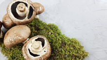 Fresh Mushrooms Close-up On Natural Moss . An Environmentally Friendly Product