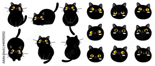 Fotografia Cute cartoon black cat character collection.
