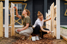 Women Paint The Fence Of A Country House