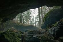 View From The Cave To The Foggy Forest