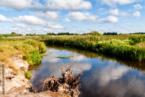 Upalne lato w Dolinie Górnej Narwi, Podlasie, Polska