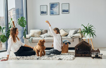 Mother With Her Daughter Playing With Dog. Cute Little Poodle Puppy Is Indoors In The Modern Domestic Room