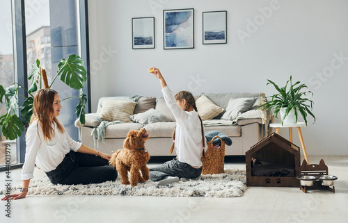 Mother with her daughter playing with dog Fototapet