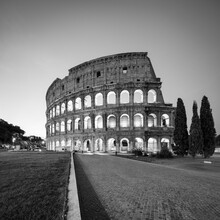 Colosseum In Black And White, Rome, Italy