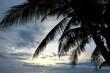 Sonnenuntergang im Paradies am Strand mit Palmen