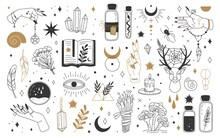 Mystic And Esoteric Elements. Moon, Witch Hands Crystals, Potions Flowers. Mystical Astrology, Magic Witchcraft Occult Symbols Vector Set. Bottles With Poison, Talisman And Feathers