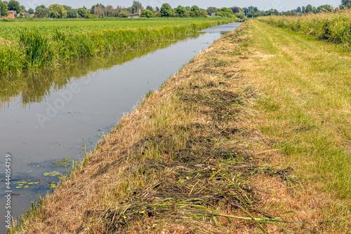 Obraz na plátně Recently on one side cleaned ditch  in a Dutch polder