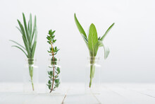 Lavender, Thyme And Sage Fresh Herbal Leaves In Mini Glass Bottles, White Wood Table Background