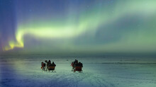 Horses Pulling Sleigh In Winter - Northern Lights Or Aurora Borealis In The Sky