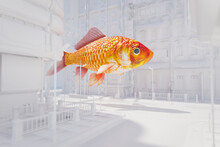 Surreal Goldfish