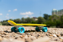 Penny Board On The Street In Nature