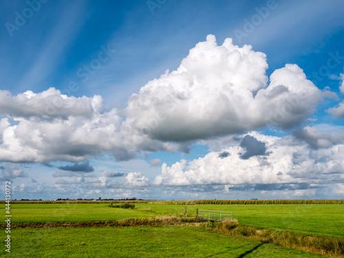 Obraz na plátně Cumulus clouds and polder landscape with grass near Grou, Friesland, Netherlands