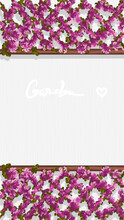 """Festive Spring Or Summer Banner With Trellis With Pink Rose Flowers And Leaves On Textured White Background And Text """"Garden"""". Oil Painting Template For Banner, Flyer, Booklet, Card."""