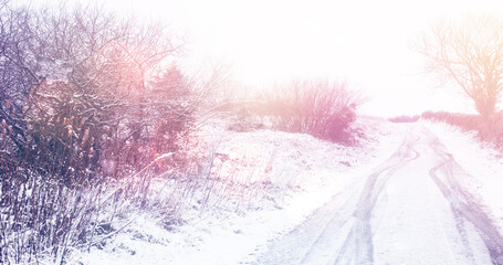 Image of landscape with winter scenery and trees and road covered in snow