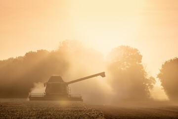 Les moisson de blé avec la moissneuse batteuse et le tracteur et sa remorque
