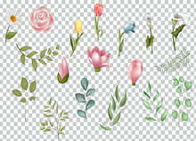 Watercolor Flower And Leaves Clipart