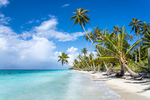 Beautiful Beach On A Tropical Island With Palm Trees And Turquoise Sea