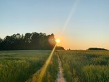 Fototapeta Rainbow - zachód słońca