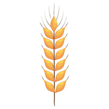 Wheat Spike Icon