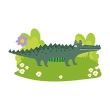 Cute Alligator Reptile