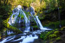 Panther Creek Falls Lower View, Washington State