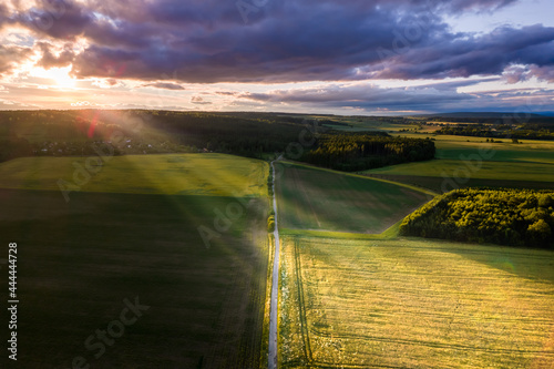 Murais de parede The path in the middle of the fields divided by a direct path at sunset on which