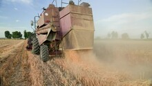 In A Wheat Field, A Combine Harvester Collects Mature Wheat And Pours Hay On The Field. Rear View.Slow-motion