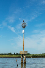 Marker For The Waterway At The Lagoon In Venice With Nest Of Bird