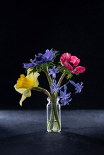 Bouquet Of Anemone Narcissus And Hyacinths