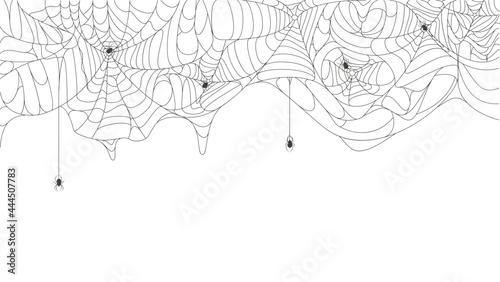 Fotografiet Halloween cobweb background