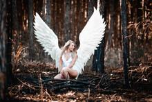 Engel Fotoshooting