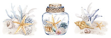 Shells In Glass Vase, Watercolor Set, Beach Scenery. Starfish, Algae, Corals And Seashells In Tropical Illustration. Isolated On White Background. Hand Drawing.