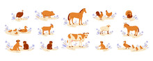 Farm Animals Set. Horse Cow Goat Duck With Ducklings Chicken With Rooster Donkey Guinea Fowl Turkey Pig Sheep Cat Dog. Vector Illustration In Flat Cartoon Style.