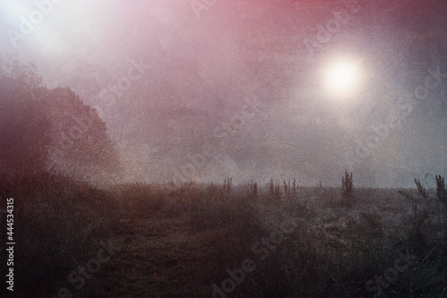 фотография A moody horror concept, of a field at night with at glowing mysterious light