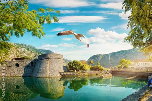 Bastion Riva in Kotor Fototapet