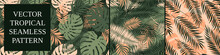 Set Of Seamless Patterns With Exotic Green Monstera Leaves And Palm Branches, Summer Tropical Vector Backgrounds
