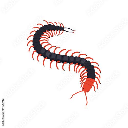 Centipede Isometric Illustration Fototapete