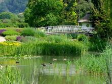 Teich Im Schlosspark Bad Pyrmont