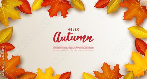 Fotografia, Obraz Autumn background with leaves on a white background.