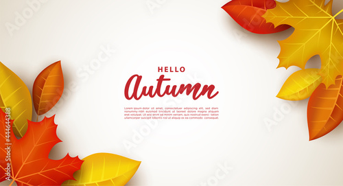 Canvas Print Autumn background with thick leaves.
