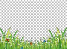 Green Grass With Butterflies On Transparent Background