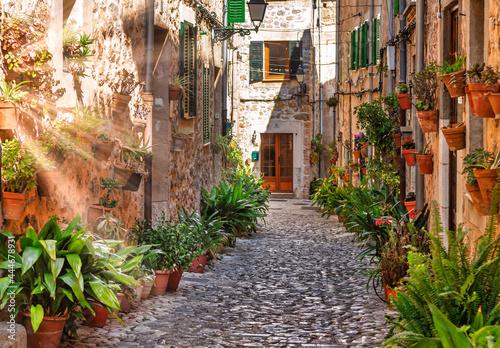 Slika na platnu Valldemossa plant street alley with sun flare
