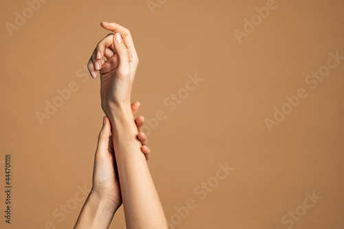 Fototapeta Beautiful and elegant woman hands