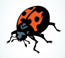 Ladybug Beetle. Vector Drawing Icon