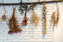 The Dried Flowers Were In Brown Bouquets Hanging From The White Brick Wall.