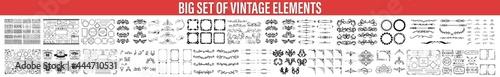 Valokuva Decorative Ornate Elements and Badges, Vector set of calligraphic design element
