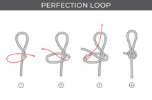 Vector Simple Instructions For Tying A Perfection Loop. Four Steps. Isolated On White Background.